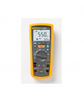 1587 FC - 2-IN-1 INSULATION MULTIMETER